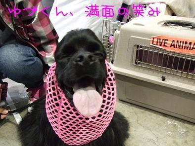 Yuzu200904041_2